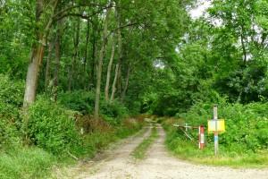 Freie Wege im Leitha-Gebirge